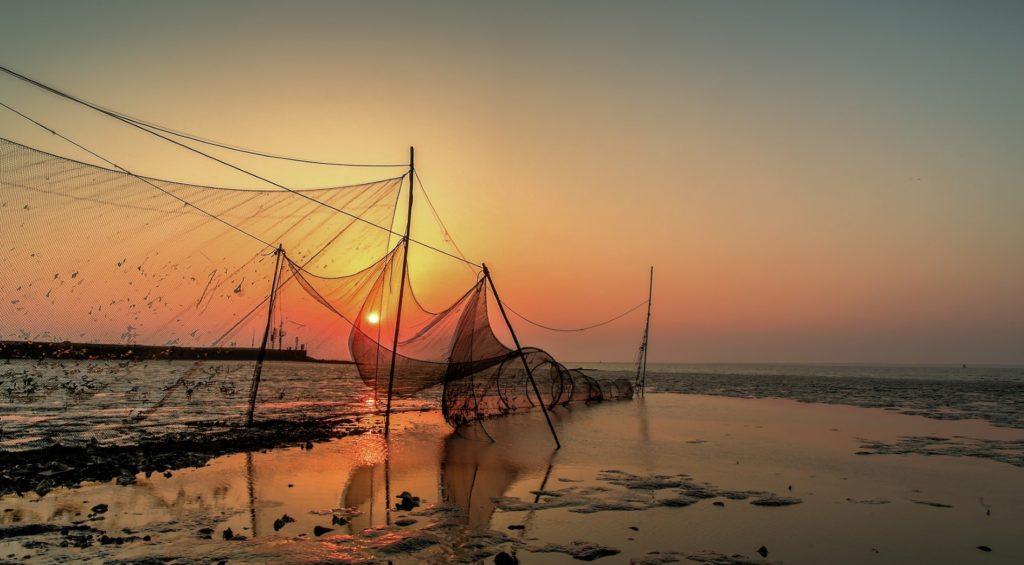 In Nederland lopen de palingvissers voorop in duurzame visvangst door zelf regulering van quota.